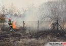 Płomienie z ogniska przeniosły się na wysoką trawę. Popołudniowa akcja gaśnicza na Lucieniu