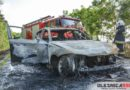 Ogień z płonącego samochodu przeniósł się na pobliski młodnik. Z pożarem walczyło 8 zastępów Straży