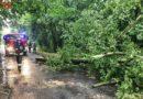 Burza nad powiatem oleśnickim w liczbach