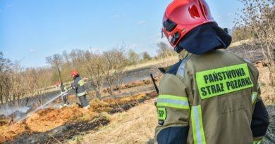 Strażacy apelują: nie wypalajmy traw!