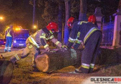 Spadające drzewo zerwało linie energetyczne