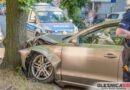 Audi wbiło się w przydrożne drzewo, by uniknąć potrącenia?